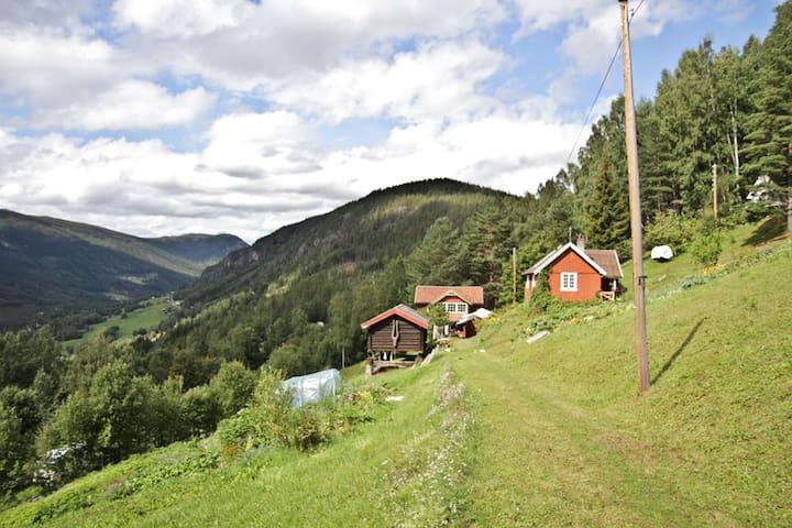 Cabin on a Eco farm - B&B Skifterud - Austbygdi - Inap sarapan