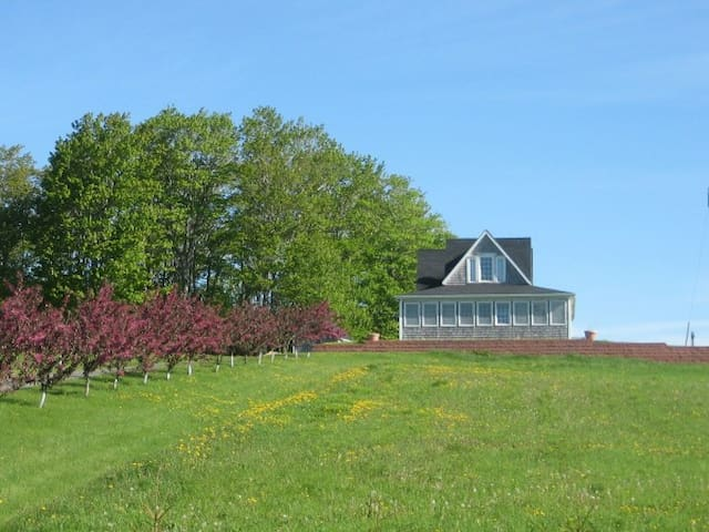 Percy Hill Vacation Home - Glenwilliam - Hus