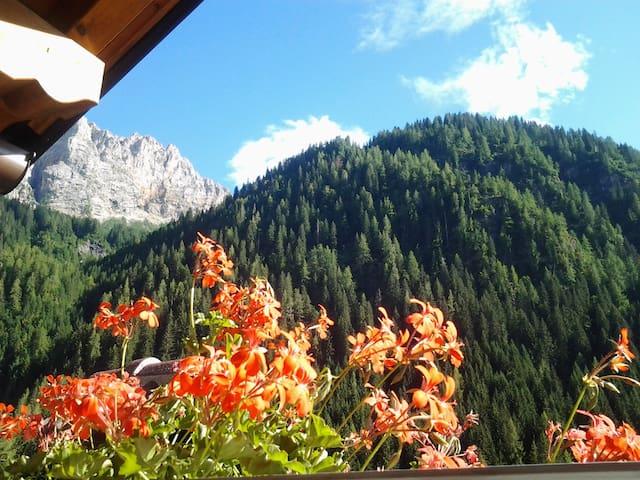 Dolomite Le Palue bnb in Marmolada - Sottoguda-palue,Rocca Pietore,BL - Bed & Breakfast
