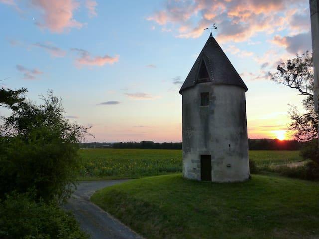 Les Moulins de la Bizetterie  - Gémozac - Huis