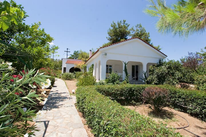 2,5 acres by the beach in Evia - 埃蒂索斯(Aidipsos)