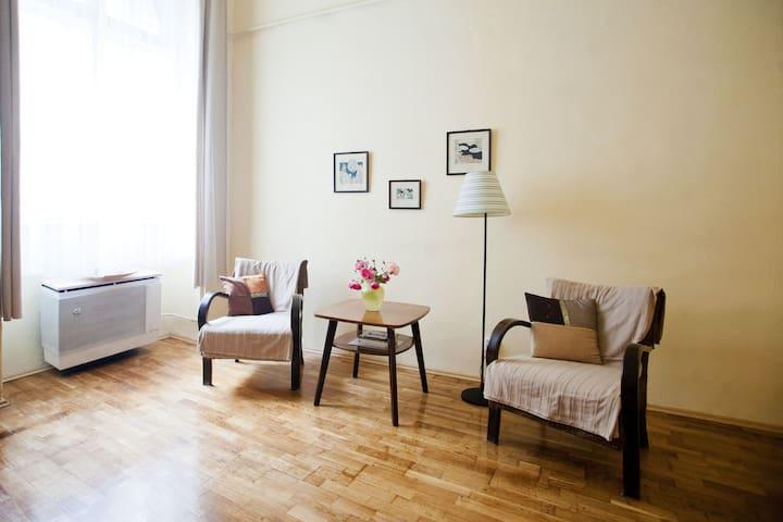 Budget apartment in the downtown! Free slippers - Budapest - Leilighet