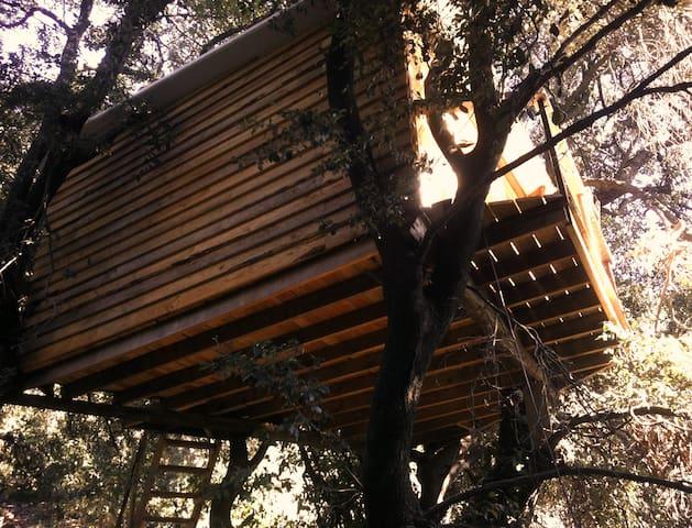 Tree House Barcelona - Molins de Rei - Bed & Breakfast
