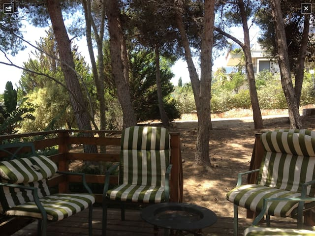 1 bedroom in Lili's Galilee's house - Kfar Vradim