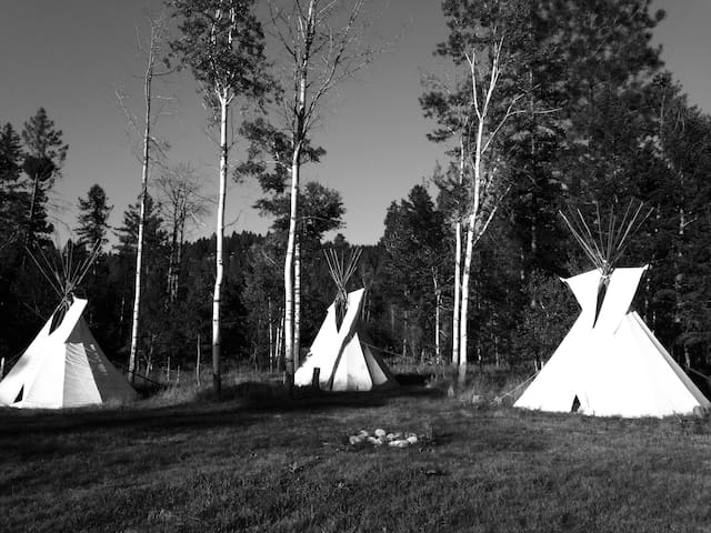 """Tatonka"" Tipi in the Woods - Kalispell - Tipi"