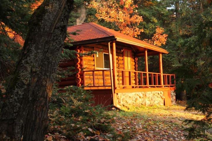 Welcome to the Studio Log Cabin - Corbeil