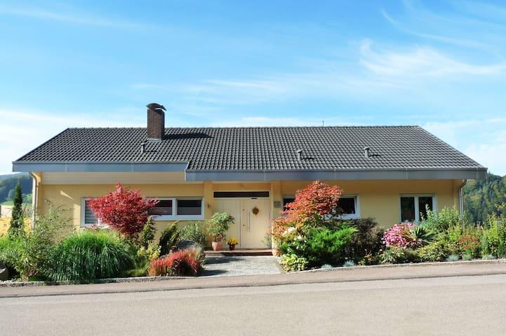 SCHÖNE FEWO NÄHE EUROPA PARK - Seelbach - Huoneisto