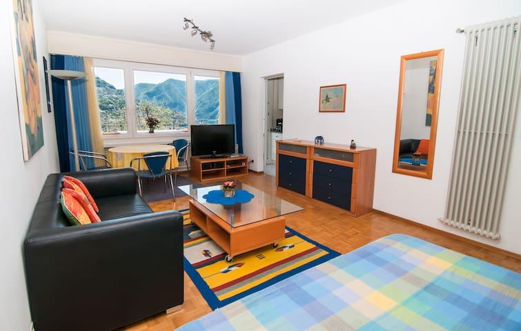 Nice lake view apartment in Lugano - Massagno - Lägenhet