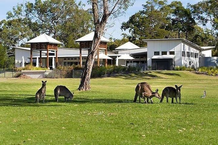 Luxury 2 bedroom beach home -Aussie paradise - Noosa North Shore