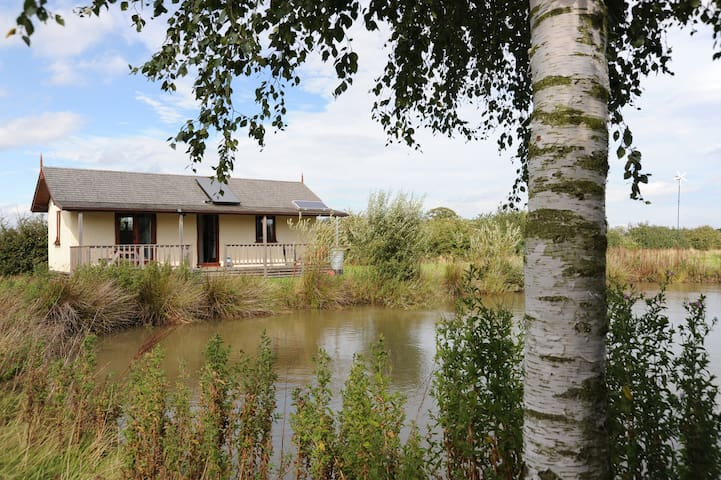 Cosy eco cabin in the countryside - York - Sommerhus/hytte