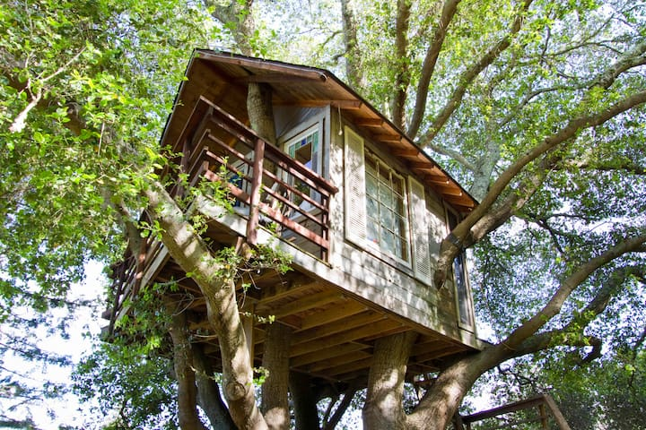 Treehouse Above San Francisco Bay! - Burlingame - Dům na stromě