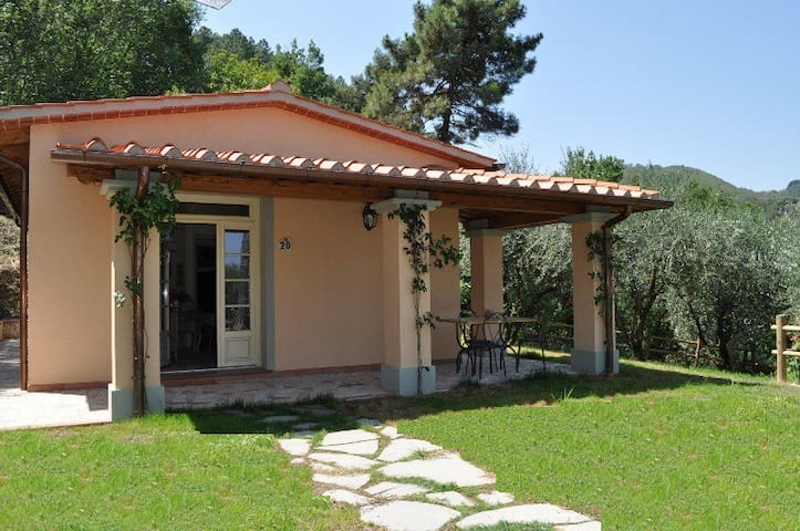 New 2 bed villa with large pool - Quarrata - Zomerhuis/Cottage