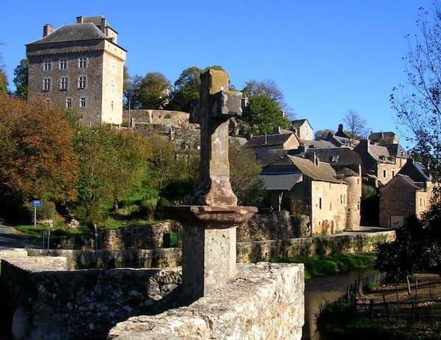 Unique Farmhouse in Medieval Town - Montrozier - Casa