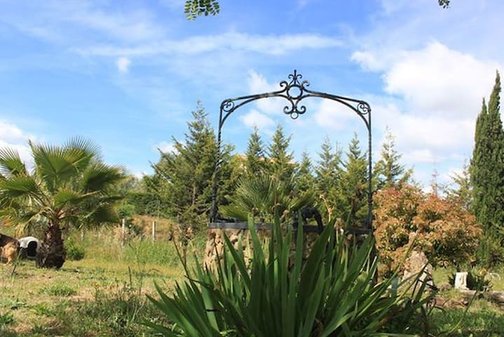 Azienda agricola Campi Cauri - Grammichele - Huis