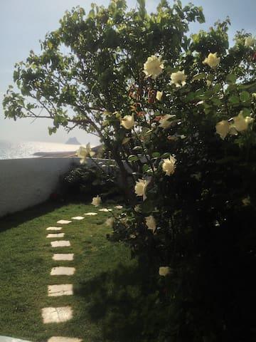 A little piece of paradise... - Rafraf - Hus