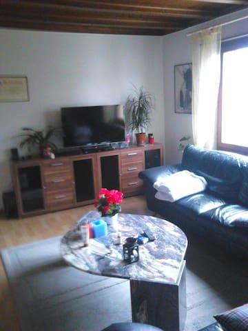 Wohnung 4,5 Zimmer möbliert  - Turgi - Appartamento