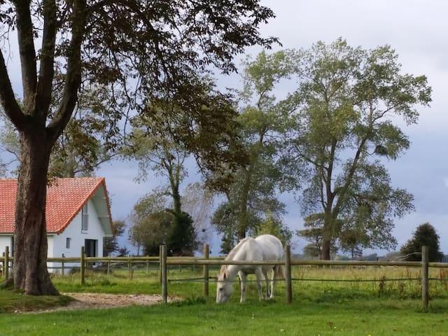MAISON AU VERT  - Assigny - Casa