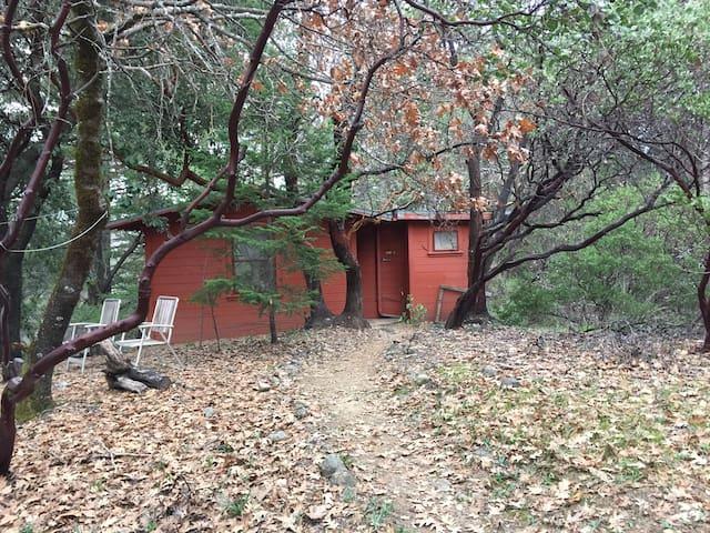 Moon Cabin, Four Springs Retreat - Middletown - Kabin
