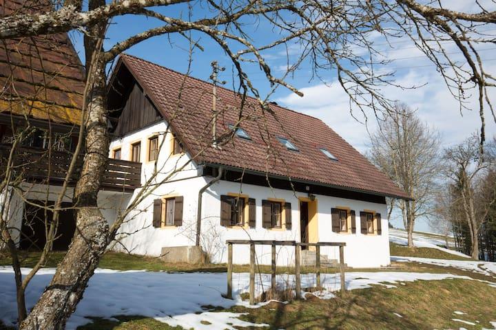 Attersee Ferienhaus - Oberhehenfeld