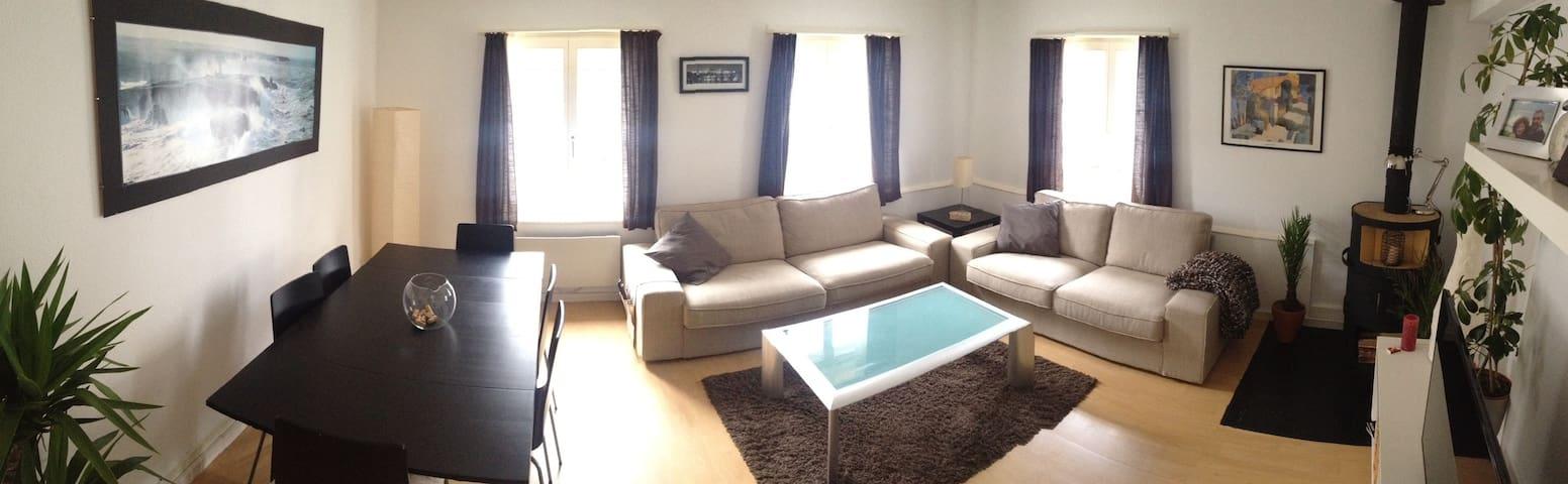 Nice Apartment  in Aarau - Aarau - Departamento