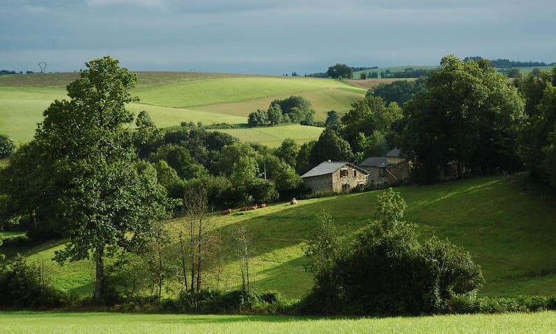 Cosy : perfect for natures' lovers - Saint-Pierre-de-Trivisy
