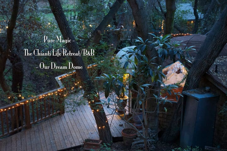 Magical Dream Dome Treehouse @ TCL - Topanga