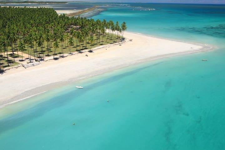 Paradise in Carneiros Beach - Tamandaré