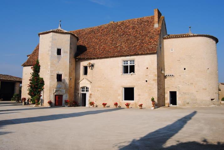 Chambre dans manoir historique  - Montignac charente - Slott