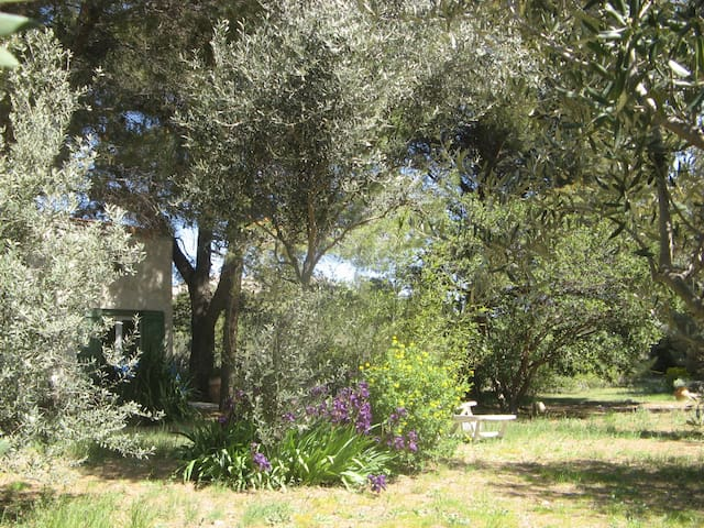 CHARMING LITTLE COTTAGE IN PROVENCE - Lambesc - House