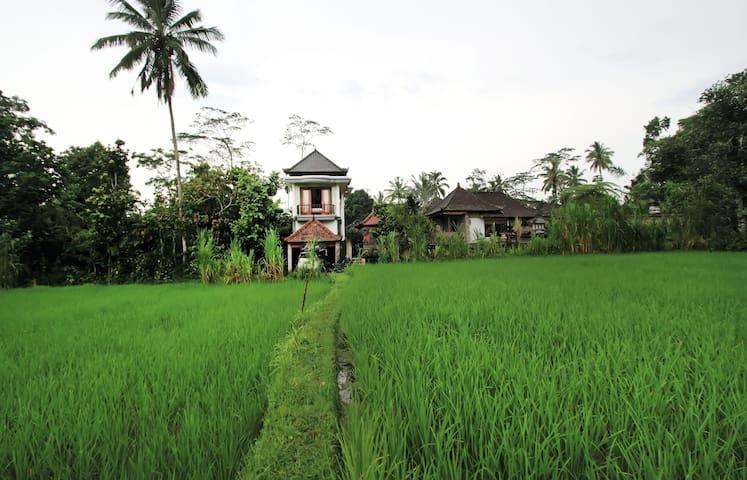 Coffee Cottage - Ubud - Bed & Breakfast