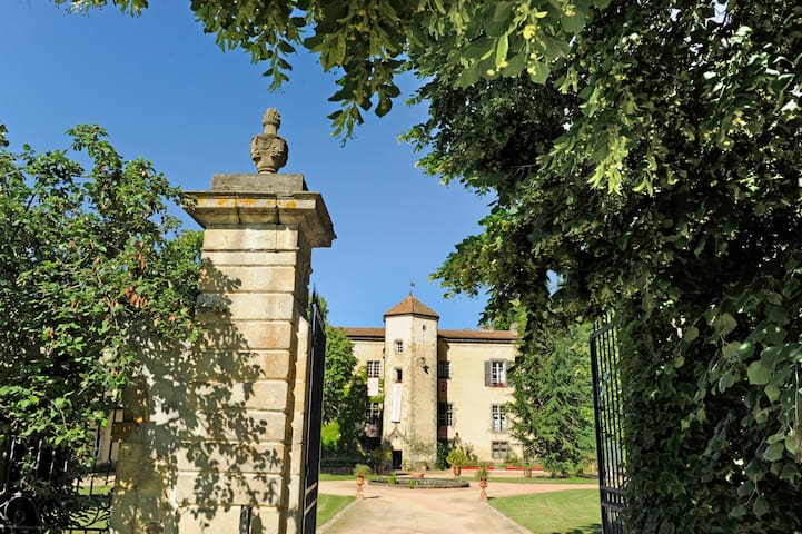 280sqm accomodation in a château - Thiers - Castelo