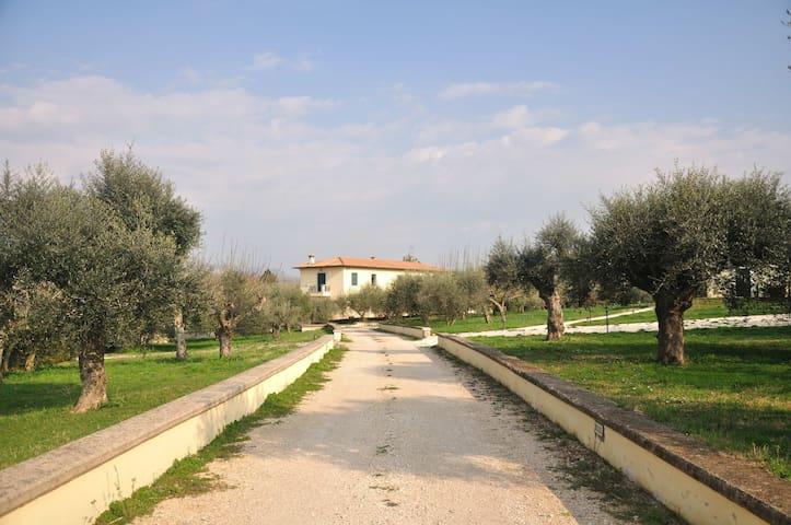 'A Casa di Zia' just outside Rome! - Zagarolo - Hus
