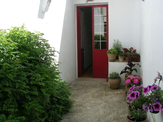 Semi independent villa in Salento - Tricase - Maison