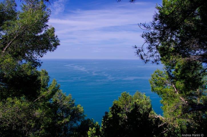 Casa vacanze tra Cinque Terre e Versilia - Ameglia - Rumah