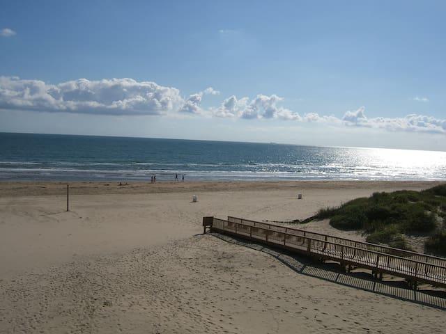 South Padre Island Beachfront Condo - South Padre Island - Lyxvåning