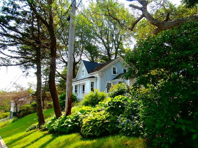 Bloomfield Cottage - Harbourville - Huis