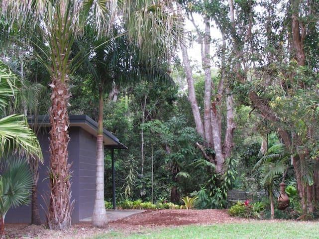 GORGEOUS CABIN ON THE LAKE among trees & wildlife. - Yungaburra - Houten huisje