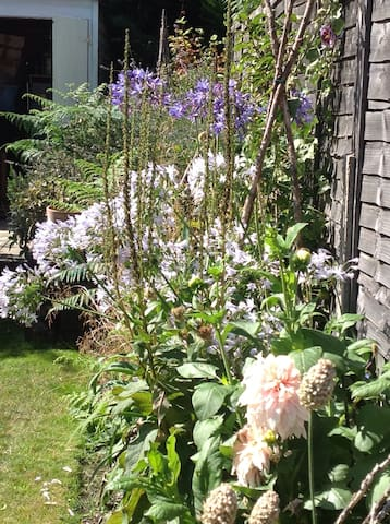 Victorian Cottage with garden - West Molesey - Rumah