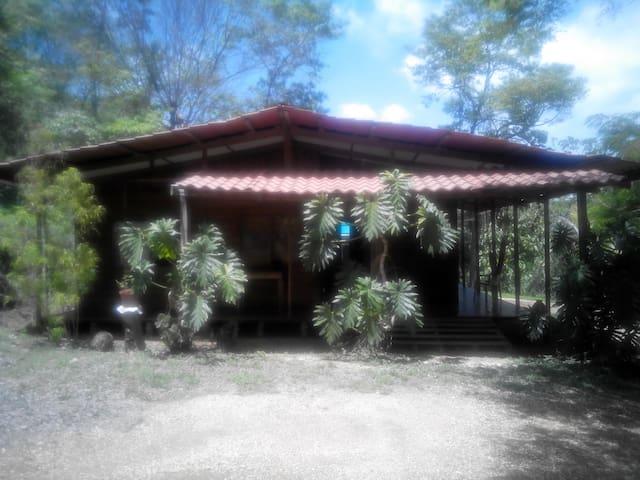 Habitacion en cabaña tropical - Curime - Casa