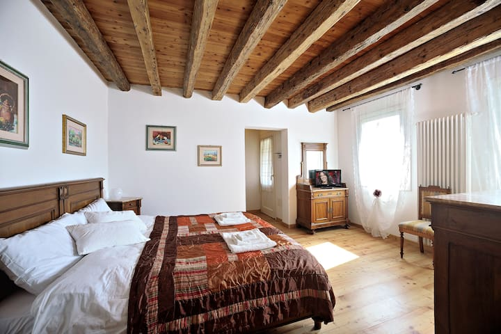 SUITE IN COUNTRY HOUSE - vascon di carbonera - Bed & Breakfast