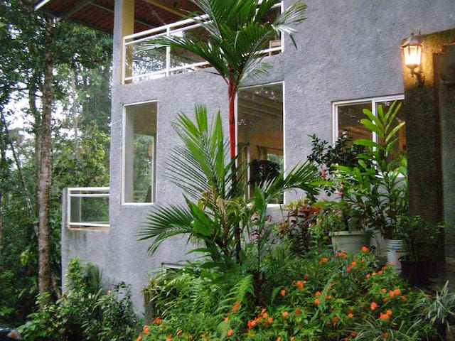 Treehouse In Cloud Forest of Panama - Paso Blanco - Rumah