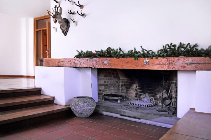 Carnia: wonderful typical flat!! - Comeglians