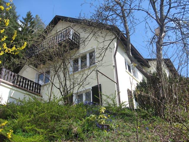 Ruhige Ferienwohnung am Waldrand - Alpirsbach - Appartement