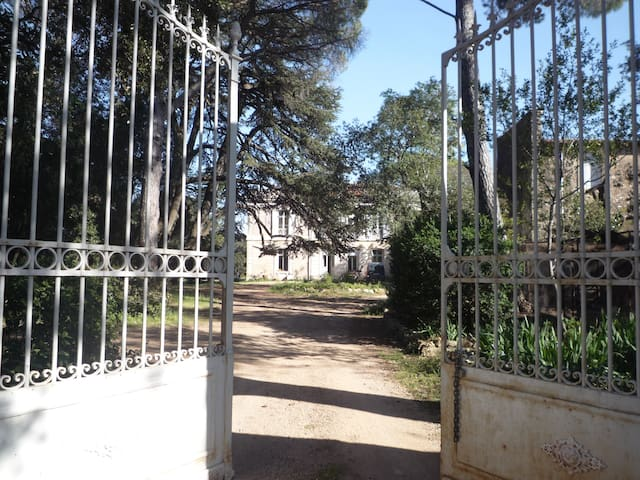 Rustic Manoir Montpellier Languedoc - Saint-Georges-d'Orques - Leilighet