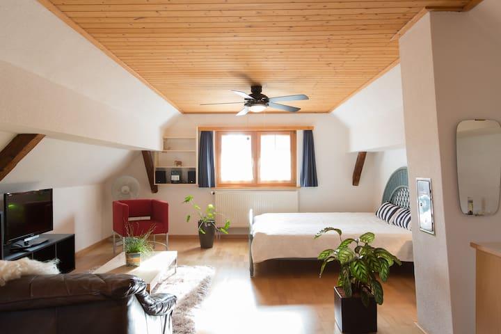 Relaxing break in 290year old house - Balgach