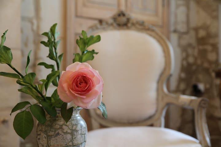 Maison du Manoir in Loire Valley - Noyant-la-Plaine - Rumah