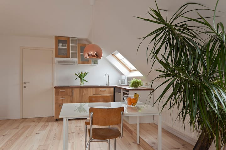 Bright apt. with free parking and free bicycles - Gent