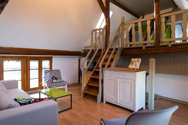 Logement rénové dans ferme alsacien - Pfettisheim