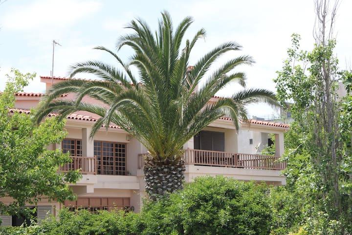 Villa Cullinan-Sea front apartment - Vrachati