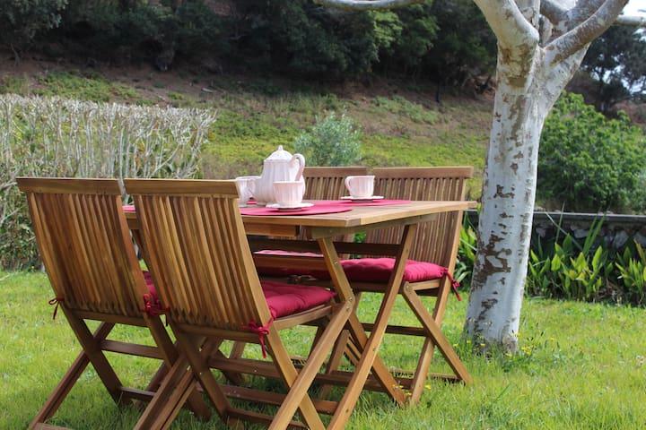 Casa Rústica com Jardim - Agua De Pau
